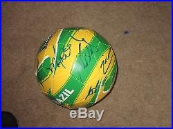 2016 brazil team signed soccer ball w coa