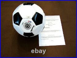 Pele Brazilian Soccer Star Cosmos Hof Signed Auto Premium Ball Psa/dna Fanatics