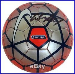 Nike soccer ball premier league